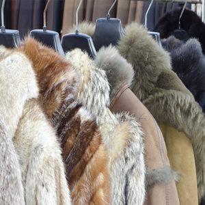 Fur Storage & Cleaning